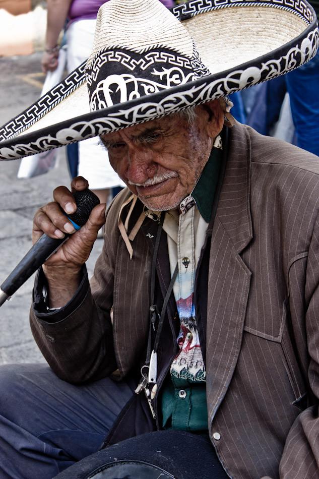 The Old Singer