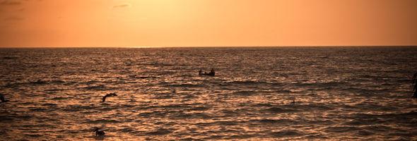Sunset Boat Fishing