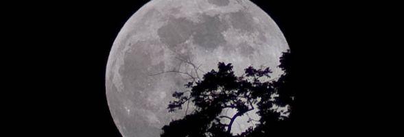 Raising Moon